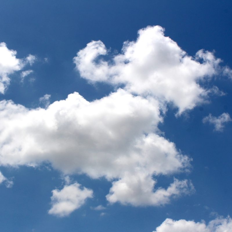 sunny clouds high in the sky