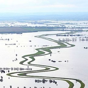 flooded fields with track running through