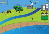land contamination infographic explaining the process