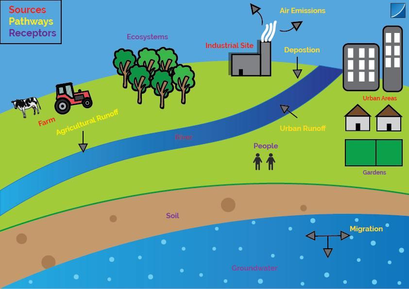 land contamination infographic explaining the process